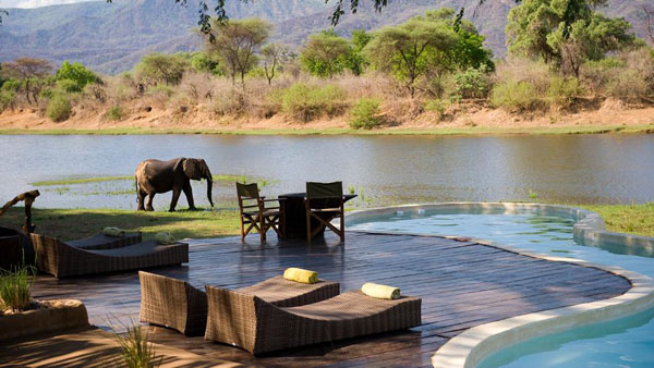 005651-05-pool-lounging-with-elephant