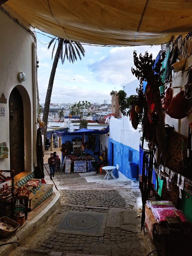 Dagny Zenovia Morocco Travel 15